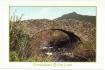 Carte postale Petra Viva 14 - 2003