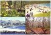 Carte postale Petra Viva 16 - 2003
