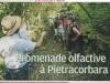 Article Corse Matin du 23 juillet 2017