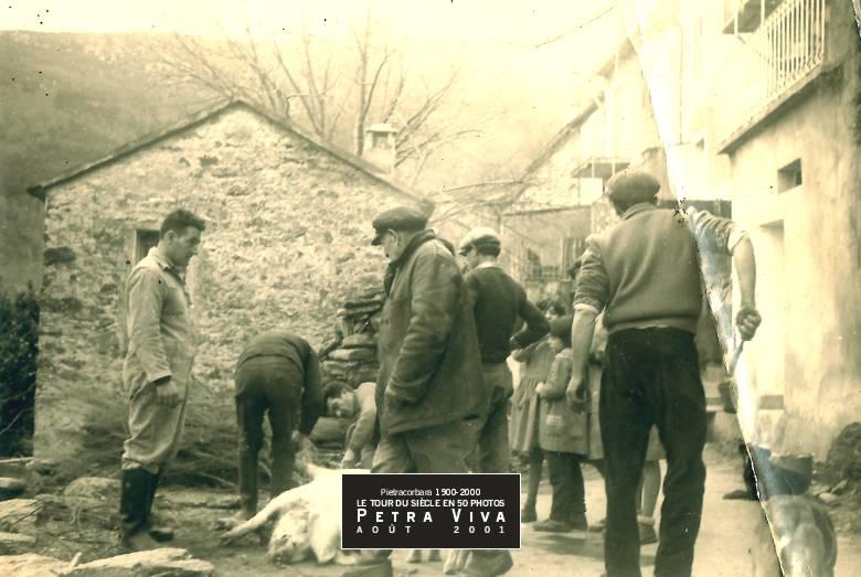 1961. A tumbera à Selmacce. La bête est au sol, déjà blanchie (nettoyée de ses poils) et les hommes la soupèsent avant de commencer le dépeçage. Observez les enfants qui, eux, vont profiter d'un cours de sciences naturelles. Collection Ginette Albertini.