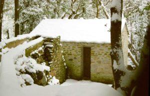 Mulinu vivu sous la neige