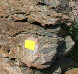 Balisage jaune. Avril 2007. Photo D.A.