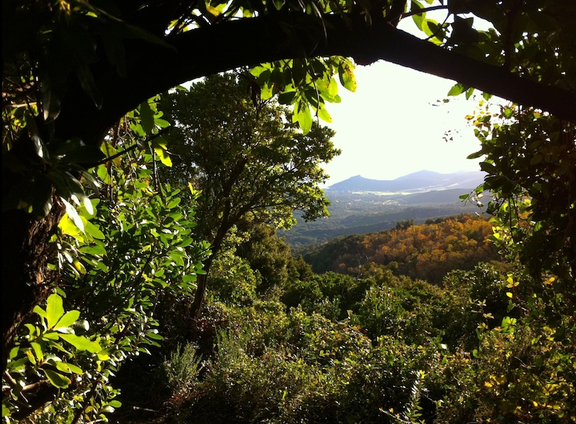 Vue sur la vallée depuis le chemin. Décembre 2012. Photo D.A.