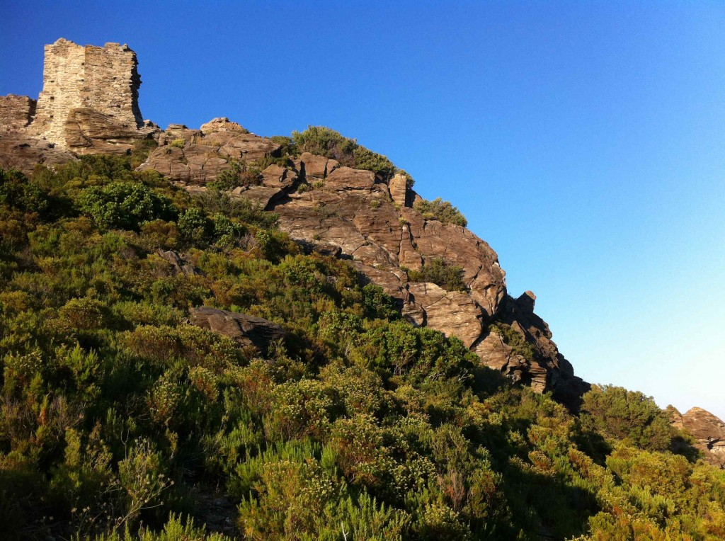 Sentier botanique Pietracorbara